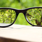 eyeglasses in the hand over blurred tree background